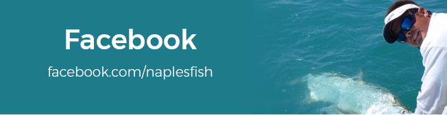 facebook.com/naplesfish