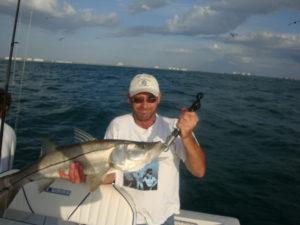 Naples Saltwater Fishing - Fishing 11