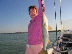 Naples Saltwater Fishing - Fishing 27