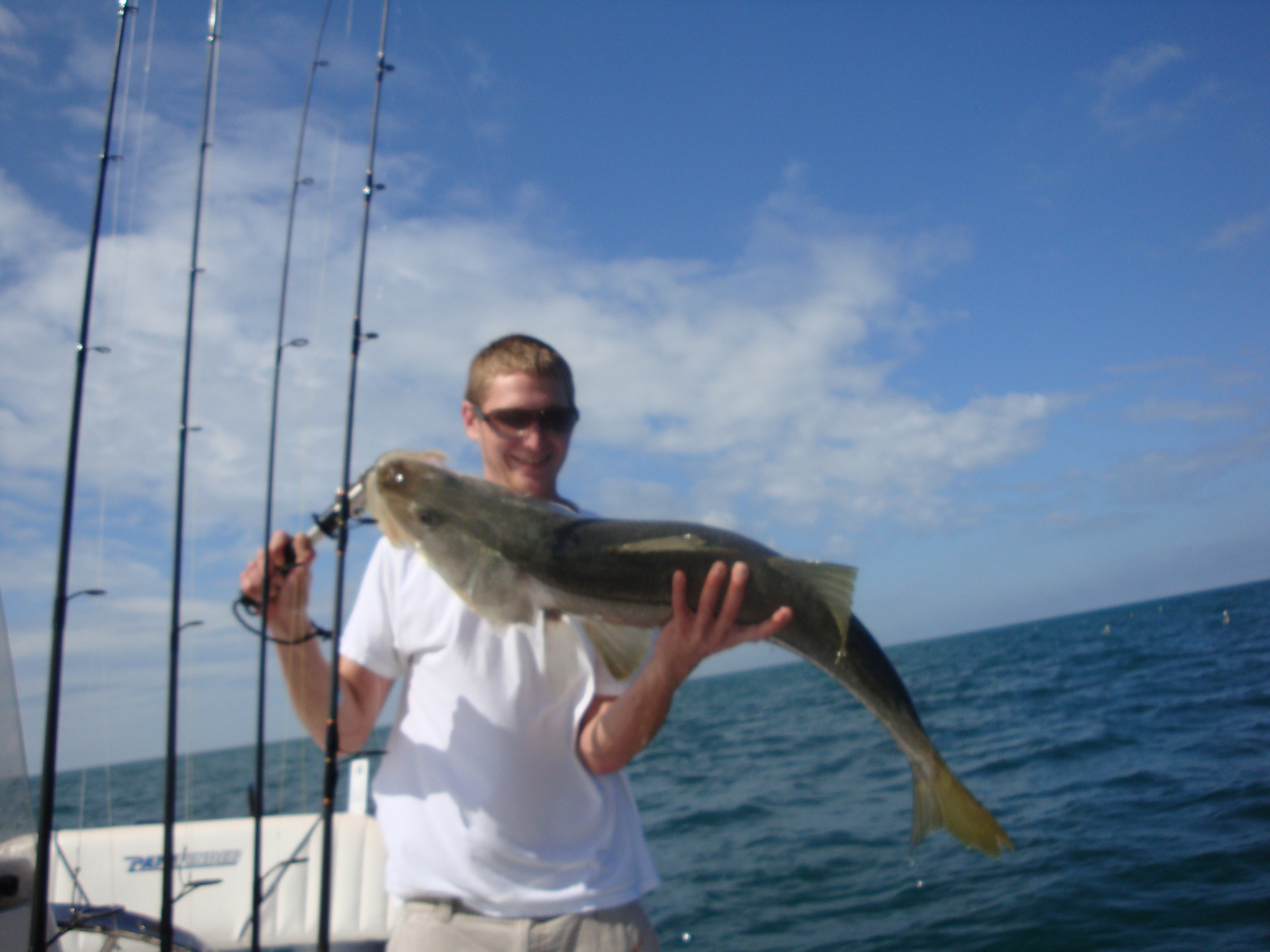 Naples florida fishing charter justin naples fl fishing for Fishing charters naples fl