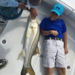 Naples Saltwater Fishing - Fishing 60
